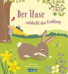 Anita Loughrey: Der Hase entdeckt den Frühling, Buch