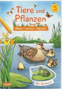 Lena Bachmann: Tiere und Pflanzen: Malen Lernen Rätseln, Buch