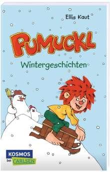 Ellis Kaut: Pumuckl - Wintergeschichten, Buch