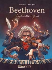 Peer Meter: Beethoven, Buch