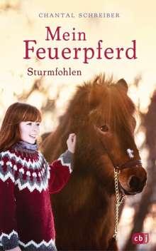 Chantal Schreiber: Mein Feuerpferd - Sturmfohlen, Buch