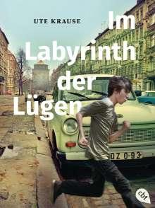 Ute Krause: Im Labyrinth der Lügen, Buch