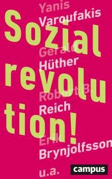 Sozialrevolution!, Buch