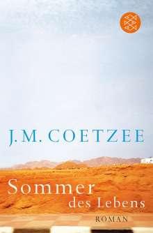 J. M. Coetzee: Sommer des Lebens, Buch