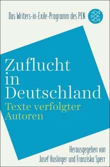 Zuflucht in Deutschland, Buch