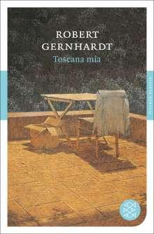 Robert Gernhardt: Toscana mia, Buch
