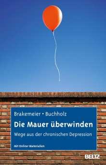 Eva-Lotta Brakemeier: Die Mauer überwinden, Buch