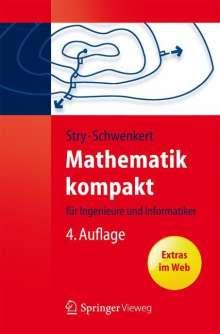Yvonne Stry: Mathematik kompakt, Buch