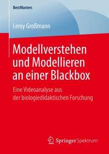 Leroy Großmann: Modellverstehen und Modellieren an einer Blackbox, Buch