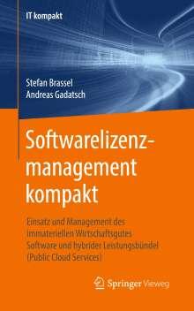 Stefan Brassel: Softwarelizenzmanagement kompakt, Buch