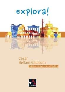 Thomas Doepner: Cäsar, Bellum Gallicum, Buch