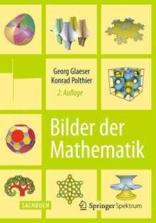 Georg Glaeser: Bilder der Mathematik, Buch