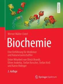 Werner Müller-Esterl: Biochemie, Buch