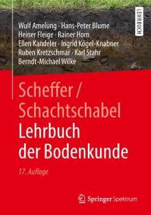 Wulf Amelung: Scheffer/Schachtschabel Lehrbuch der Bodenkunde, Buch