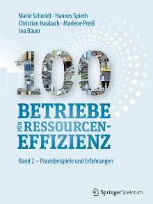 Mario Schmidt: 100 Betriebe für Ressourceneffizienz, Buch