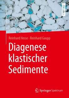 Reinhard Hesse: Diagenese klastischer Sedimente, Buch