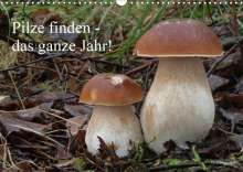 Rudolf Bindig: Pilze finden - das ganze Jahr! (Wandkalender 2020 DIN A3 quer), Diverse