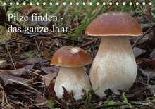 Rudolf Bindig: Pilze finden - das ganze Jahr! (Tischkalender 2020 DIN A5 quer), Diverse