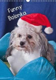 K. A. Weh-Zet: Funny Bolonka (Wandkalender 2020 DIN A3 hoch), Diverse