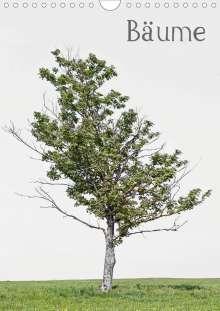 Peter von Felbert: Bäume (Wandkalender 2020 DIN A4 hoch), Diverse