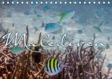 Clave Rodriguez Photography: Unterwasserwelt der Malediven III (Tischkalender 2020 DIN A5 quer), Diverse