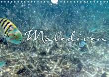 Clave Rodriguez Photography: Unterwasserwelt der Malediven IV (Wandkalender 2020 DIN A4 quer), Diverse