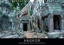 Stephan Knödler www. stephanknoedler. de: Angkor - Geheimnisse des Dschungels (Wandkalender 2020 DIN A4 quer), Diverse