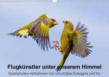 Lutz Klapp: Flugkünstler unter unserem Himmel - Spektakuläre Aufnahmen von Uhu,Krähe,Graugans und Co (Wandkalender 2020 DIN A3 quer), Diverse