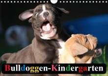 Elisabeth Stanzer: Bulldoggen-Kindergarten (Wandkalender 2020 DIN A4 quer), Diverse