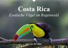 Ursula Di Chito: Costa Rica - Exotische Vögel im Regenwald (Wandkalender 2020 DIN A3 quer), Diverse