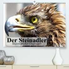 Elisabeth Stanzer: Der Steinadler. Majestätischer Greifvogel(Premium, hochwertiger DIN A2 Wandkalender 2020, Kunstdruck in Hochglanz), Diverse