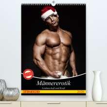 Elisabeth Stanzer: Männererotik. Leidenschaft und Kraft(Premium, hochwertiger DIN A2 Wandkalender 2020, Kunstdruck in Hochglanz), Diverse