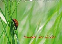 Avianaarts Design Fotografie By Tanja Riedel: Momente des Glücks (Wandkalender 2021 DIN A3 quer), Kalender