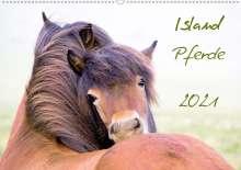 Frauke Gimpel: Islandpferde (Wandkalender 2021 DIN A2 quer), Kalender