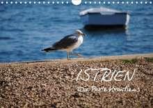 Tobias Keller Photography: ISTRIEN - Die Perle Kroatiens (Wandkalender 2021 DIN A4 quer), Kalender