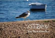Tobias Keller Photography: ISTRIEN - Die Perle Kroatiens (Wandkalender 2021 DIN A2 quer), Kalender