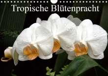 Arno Klatt: Tropische Blütenpracht (Wandkalender 2021 DIN A4 quer), Kalender