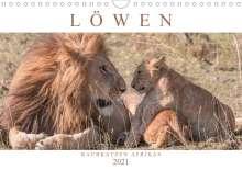 Andreas Lippmann: Löwen - Raubkatzen Afrikas (Wandkalender 2021 DIN A4 quer), Kalender