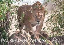 Andreas Lippmann: Raubkatzen Afrikas (Wandkalender 2021 DIN A4 quer), Kalender