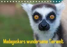 Antje Hopfmann: Madagaskars wundersame Tierwelt (Tischkalender 2021 DIN A5 quer), Kalender