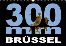 Thomas Bartruff: 300mm - Brüssel (Wandkalender 2021 DIN A3 quer), Kalender