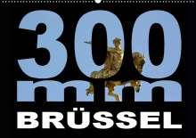 Thomas Bartruff: 300mm - Brüssel (Wandkalender 2021 DIN A2 quer), Kalender