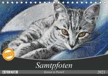 Uschi Felix: Samtpfoten - Katzen in Pastell (Tischkalender 2021 DIN A5 quer), Kalender