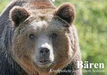Elisabeth Stanzer: Bären. Kraftpakete auf leisen Sohlen (Wandkalender 2021 DIN A2 quer), Kalender