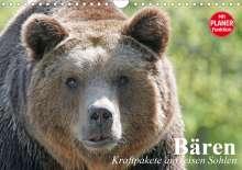 Elisabeth Stanzer: Bären. Kraftpakete auf leisen Sohlen (Wandkalender 2021 DIN A4 quer), Kalender