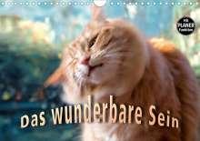 Viktor Gross: Das wunderbare Sein (Wandkalender 2021 DIN A4 quer), Kalender