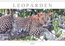 Andreas Lippmann: Leoparden - Geheimnisvolle Jäger (Wandkalender 2021 DIN A4 quer), Kalender