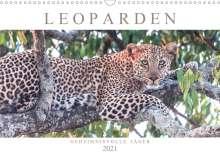 Andreas Lippmann: Leoparden - Geheimnisvolle Jäger (Wandkalender 2021 DIN A3 quer), Kalender