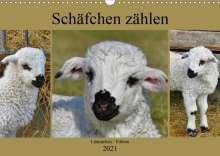 Sabine Löwer: Schäfchen zählen - Lämmchen-Edition (Wandkalender 2021 DIN A3 quer), Kalender