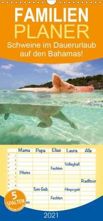 Elisabeth Stanzer: Schweine im Dauerurlaub auf den Bahamas! - Familienplaner hoch (Wandkalender 2021 , 21 cm x 45 cm, hoch), Kalender